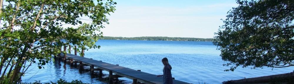 Vand og skov hører sammen med den danske sommer